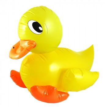 X  duck