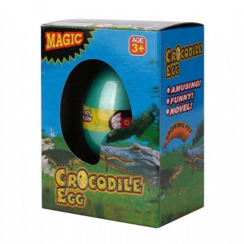 crocodile hatchin egg  pekmxekm