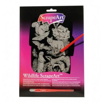 wildlife scrapeart  pekmxekm